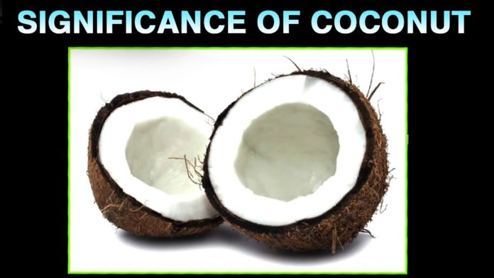 Significance of Coconut